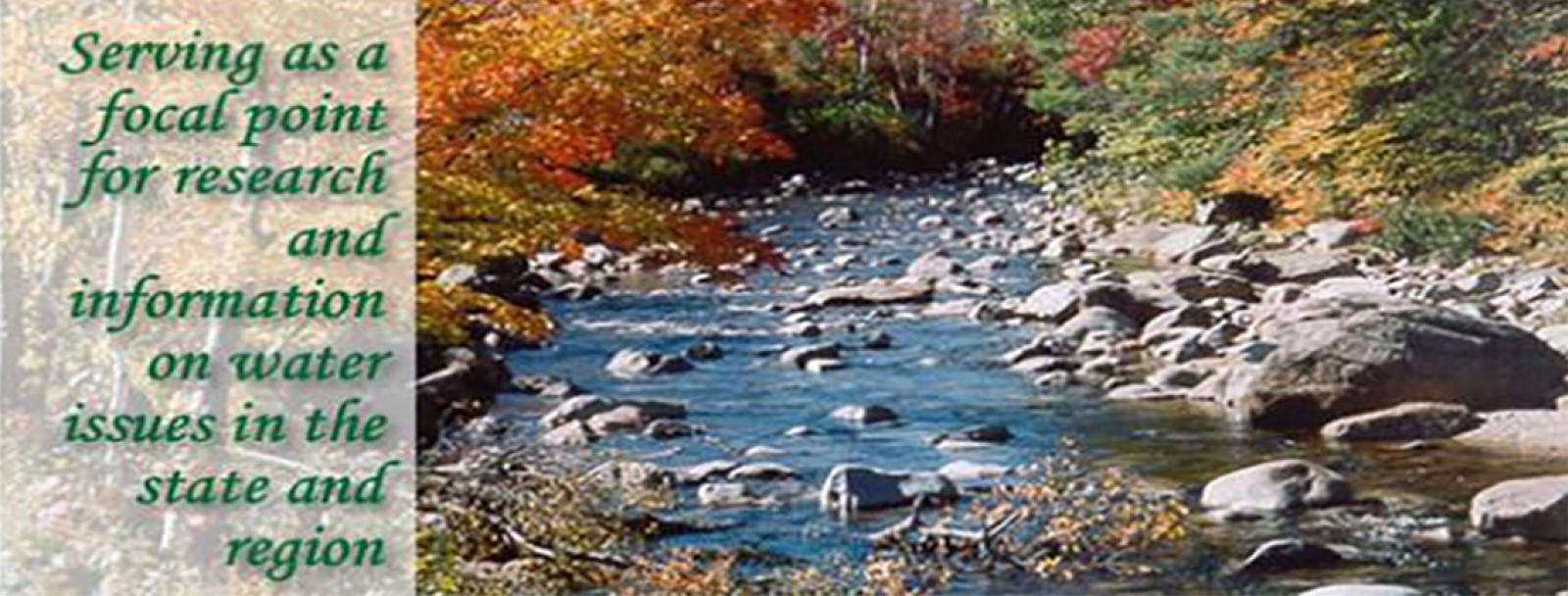 river in the autumn